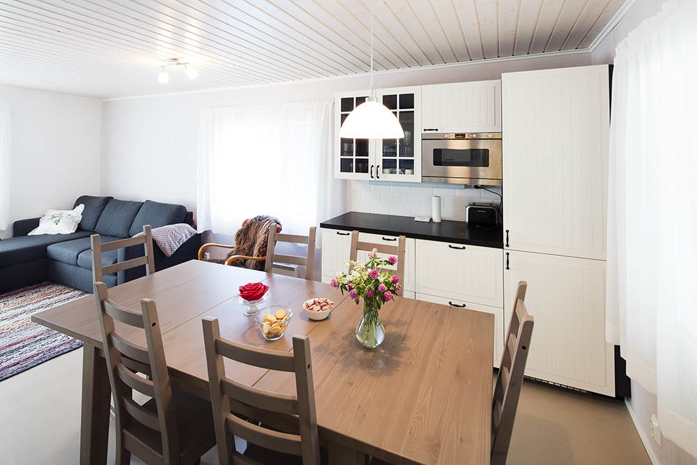 Villa Ebba holiday house, kitchen and living room.