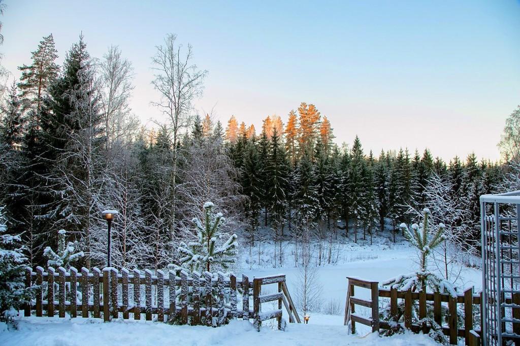 Vesan_Villa_tammi2015Näkymä_lammelle